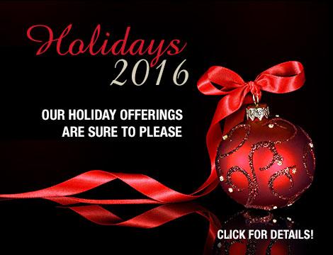 Holidays 2016